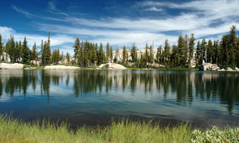 Sierra National Forest In California Alltrips