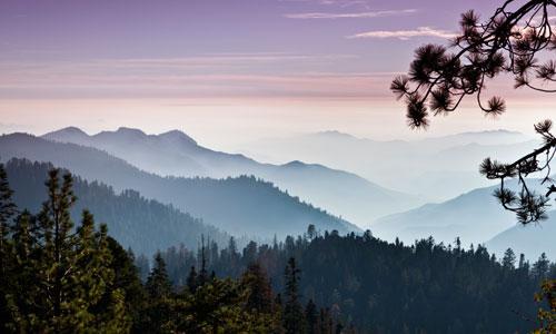 Stanislaus National Forest In California Alltrips