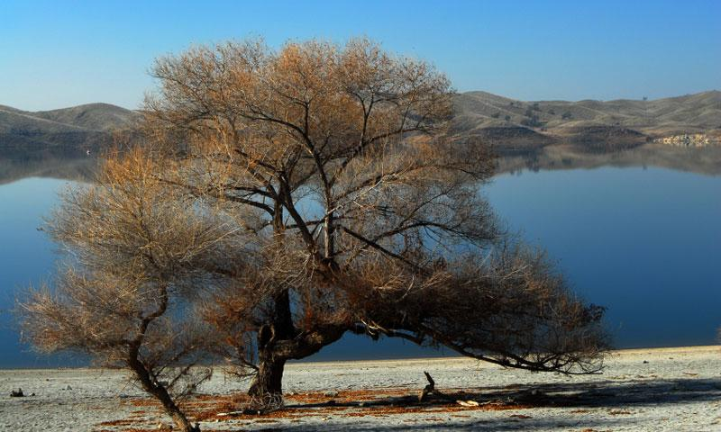 Millerton Lake in Fresno California