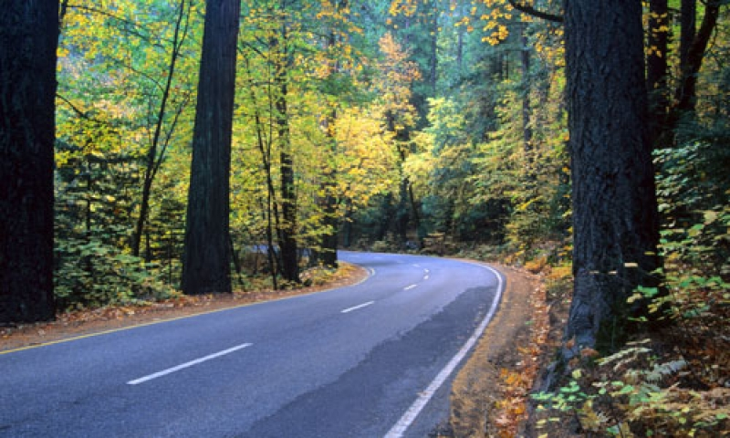 Driving the Yosemite Valley Road