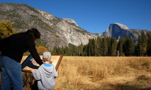 Yosemite Kids Activities