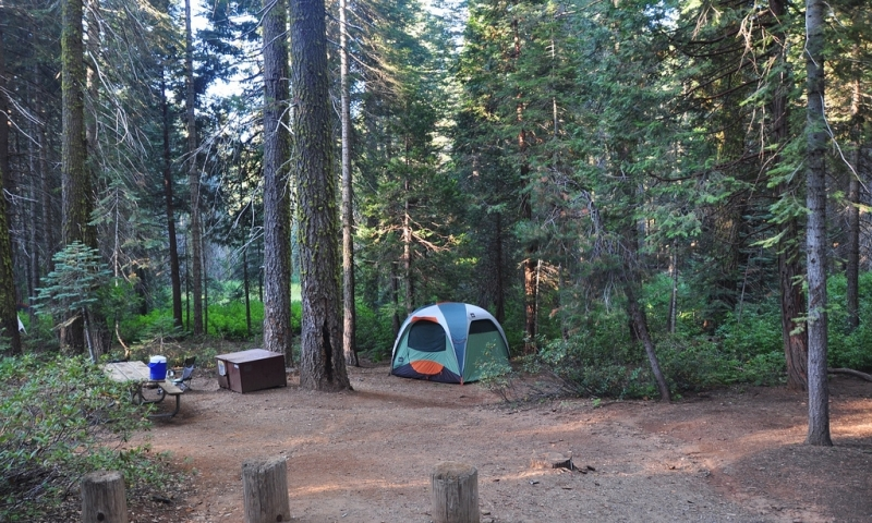 Crane Flat Campground Yosemite Camping Alltrips