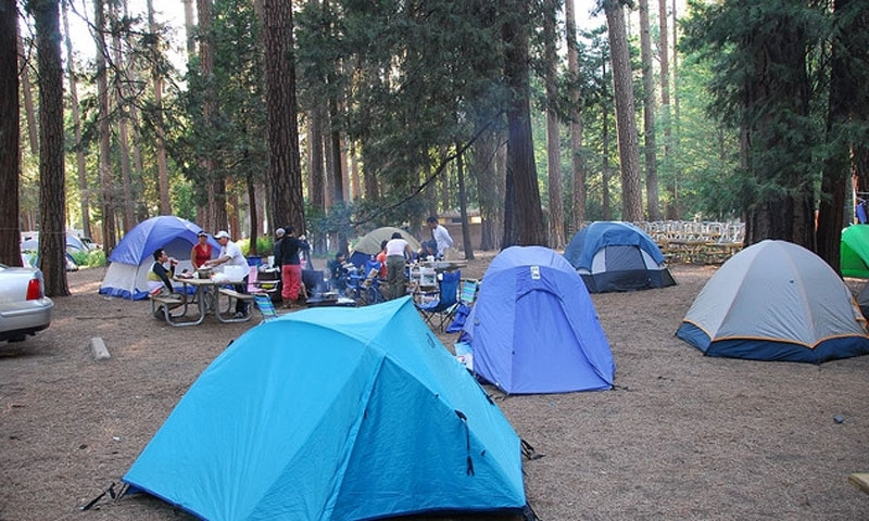 North Pines Campground Yosemite Camping Alltrips