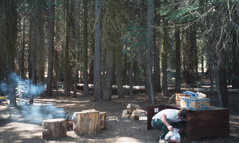 Tamarack flat campground yosemite camping alltrips for Yosemite park camping cabins