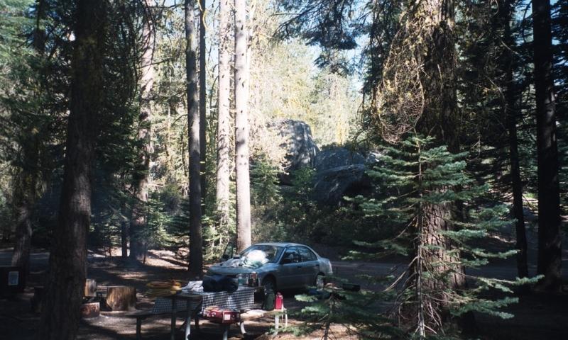 Tamarack Flat Campground Yosemite Camping Alltrips