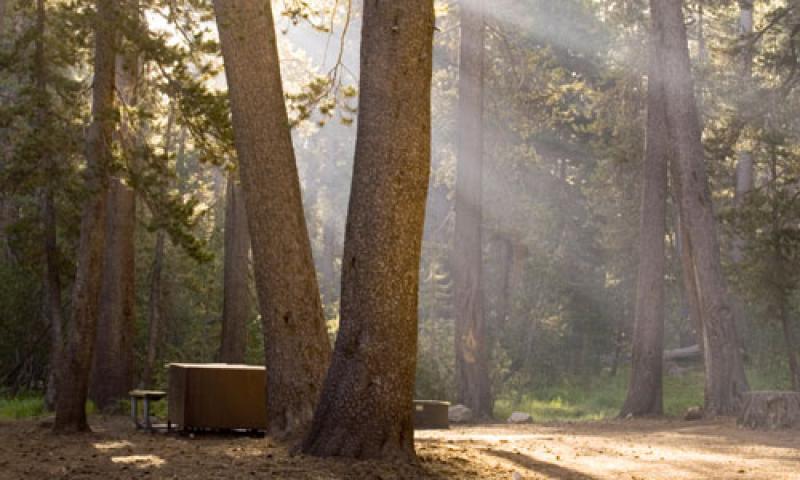 Tuolumne Meadows Campground Yosemite Camping Alltrips