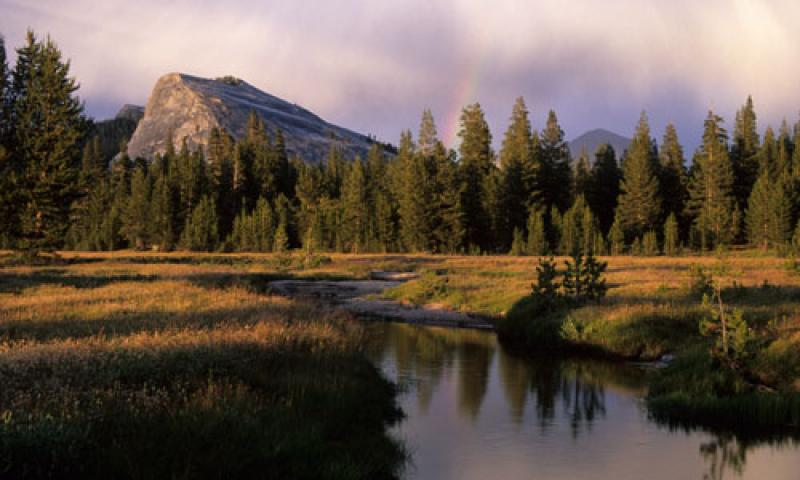 All Seasons Rv >> Tuolumne Meadows in Yosemite National Park - AllTrips