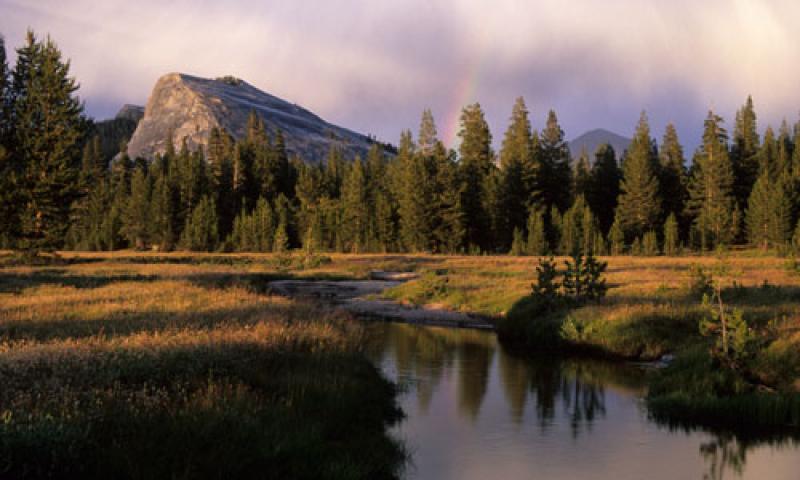Tuolumne Meadows In Yosemite National Park Alltrips