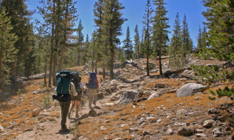 Yosemite National Park Hikes