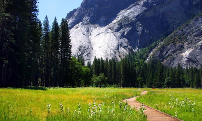 A Hiking Trail through Yosemite Valley