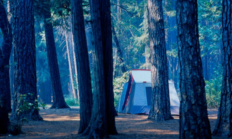 Campground in Yosemite National Park