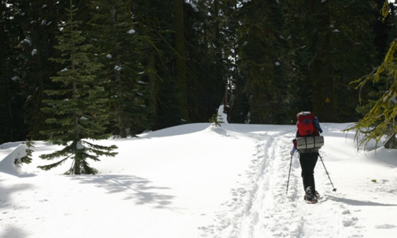 Snowshoeing to Dewey Point