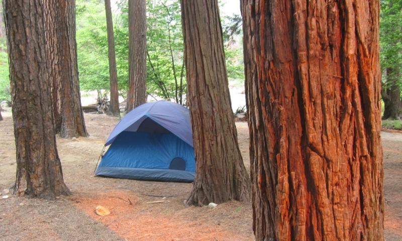 North Pines Yosemite